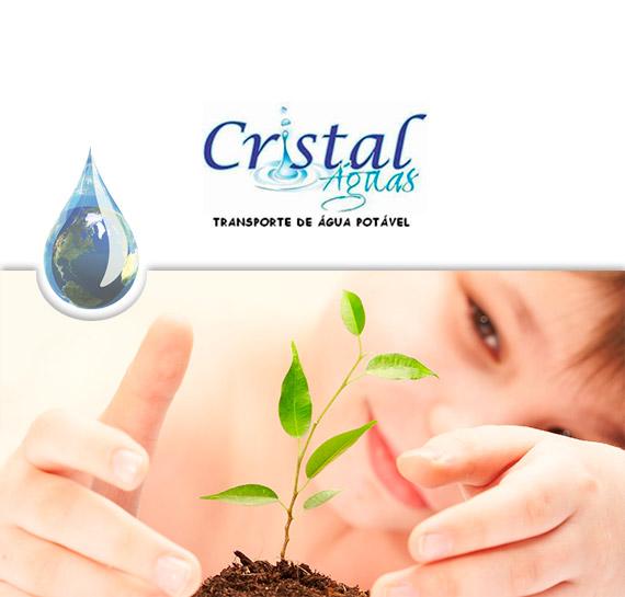 Trajetoria Cristal Águas